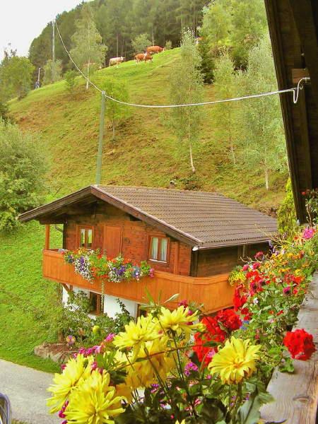 Immagine Appartamenti in agriturismo Rastnerhof