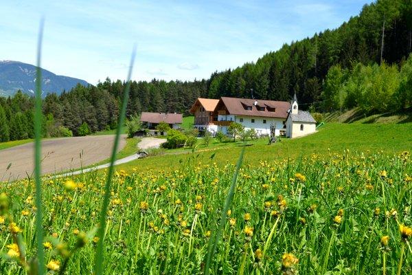 Lage Ferienwohnungen auf dem Bauernhof Weliserhof St. Lorenzen