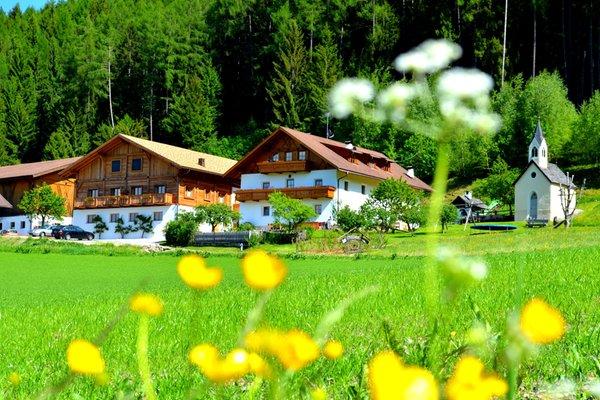Sommer Präsentationsbild Ferienwohnungen auf dem Bauernhof Weliserhof