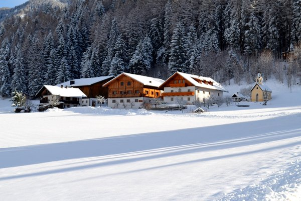 Foto Außenansicht im Winter Weliserhof