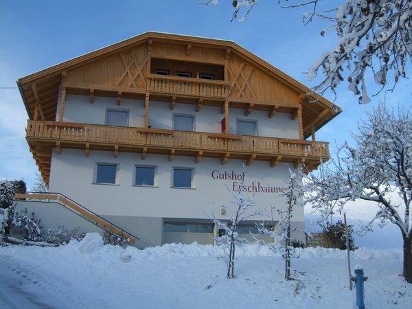 Foto esterno in inverno Erschbaumer