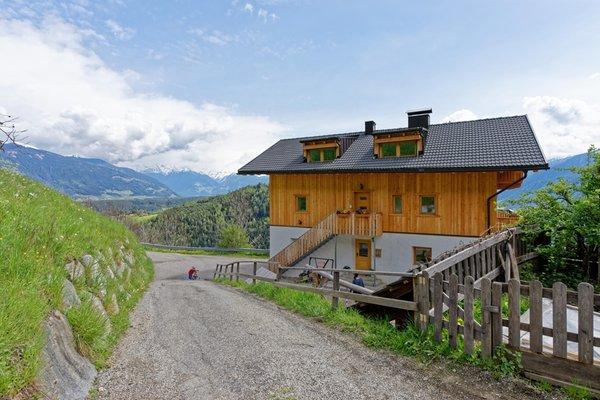Foto estiva di presentazione Appartamenti in agriturismo Kehrerhof