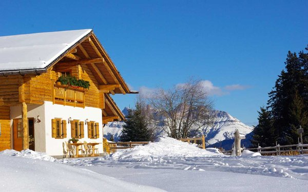 Winter Präsentationsbild Alm Capanna / Neuhütt