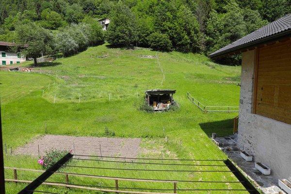 Photo of the garden Canal San Bovo (Valle del Vanoi)