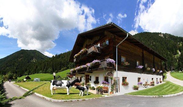 Foto estiva di presentazione Appartamenti in agriturismo Örlerhof
