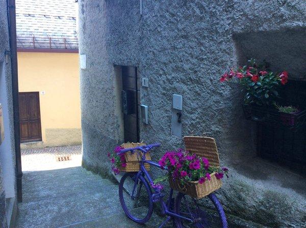 Foto esterno in estate Colombi