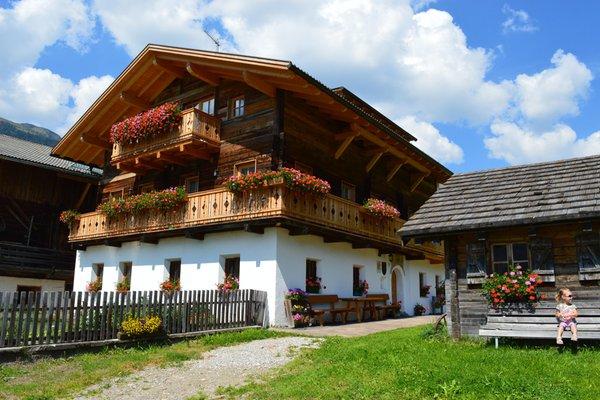 Foto esterno in estate Feldererhof