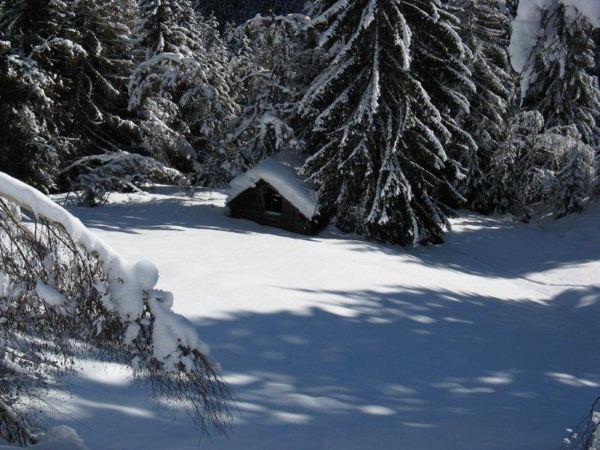Foto del giardino Monguelfo