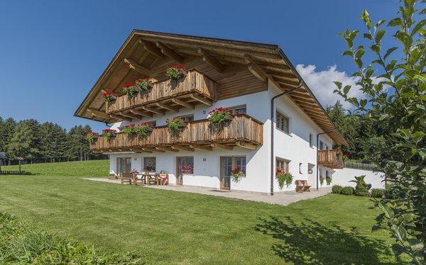 Sommer Präsentationsbild Ferienwohnungen auf dem Bauernhof Mahrhof