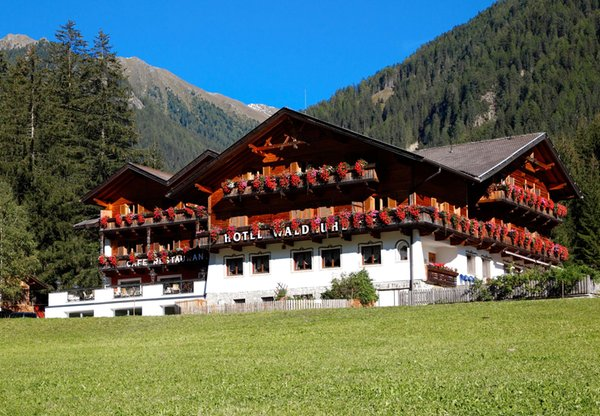 Foto estiva di presentazione Waldruhe - Hotel 3 stelle