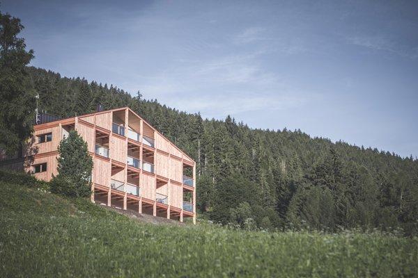 Foto estiva di presentazione Gailerhof Hotel B&B - Garni-Hotel 3 stelle sup.