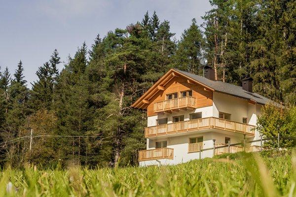 Sommer Präsentationsbild Ferienwohnungen Niciora