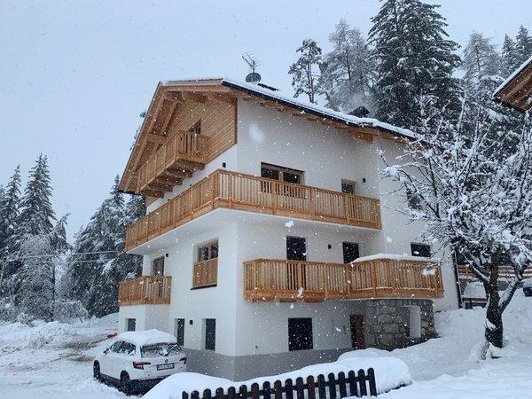 Foto Außenansicht im Winter Niciora