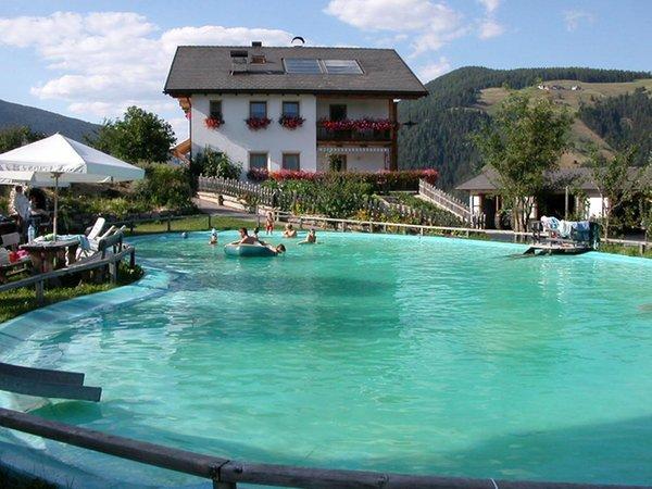 Schwimmbad Ferienwohnungen auf dem Bauernhof Lüch de tor