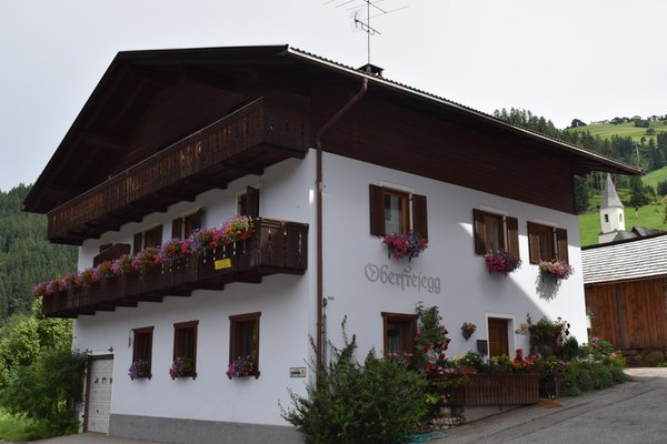 Sommer Präsentationsbild Oberfreiegg - B&B + Ferienwohnungen 2 Blumen