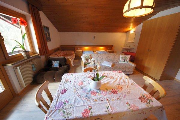 Foto dell'appartamento Oberfreiegg