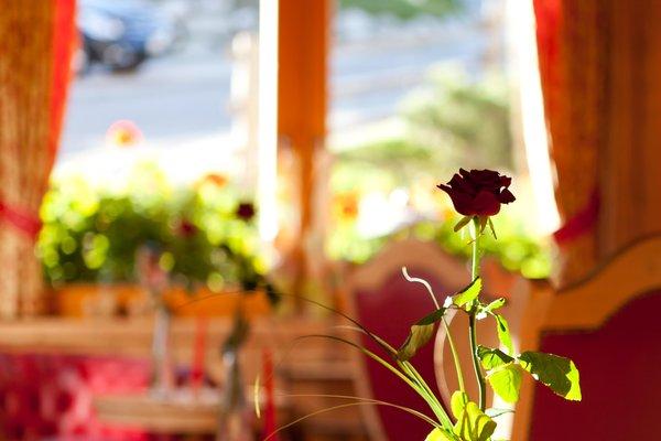 Foto di alcuni dettagli Hotel Antermoia