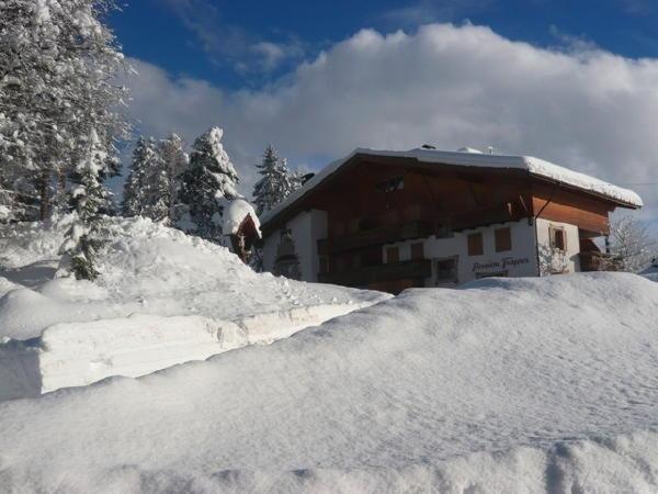 Foto invernale di presentazione Pensione + Appartamenti in agriturismo Chalet Frapes