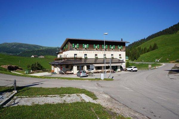 Foto estiva di presentazione Albergo Passo Brocon