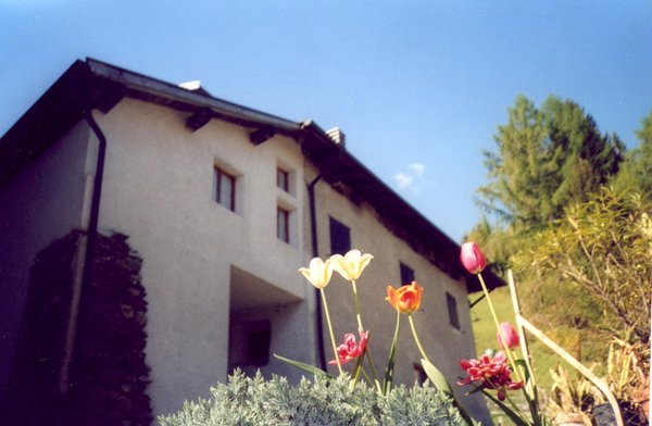 Foto estiva di presentazione Appartamenti Campregher Michele