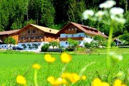Farmhouse apartments Weliserhof