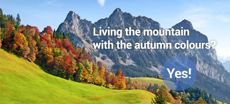 Living the mountain with the autumn colours? Yes!