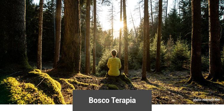 Bosco Terapia