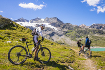 Discover the Alpine paths